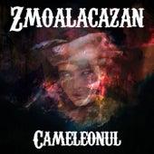 Cameleonul de Zmoalacazan