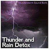 Thunder and Rain Detox by Various Artists