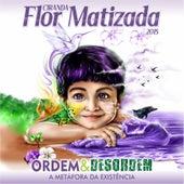 Ordem e Desordem: A Metáfora da Existência de Ciranda Flor Matizada