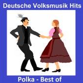 Deutsche Volksmusik Hits: Polka - Best Of by Various Artists