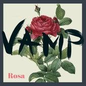 Rosa by Vamp