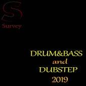 DRUM&BASS and DUBSTEP 2019 von Various