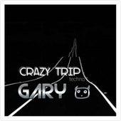 Crazy Trip. de DJ Gary