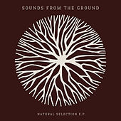 Natural Selection de Sounds from the Ground