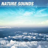 Nature Recordings - Moving wind noise by Nature Sounds (1)