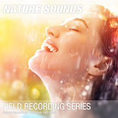 Nature Recordings - Summer rain noise von Nature Sounds (1)
