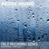Nature Recordings - Gentle city rain by Nature Sounds (1)