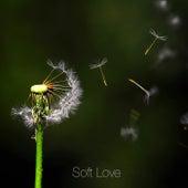 Soft Love (Instrumental Version) de Mark Andrew Hansen