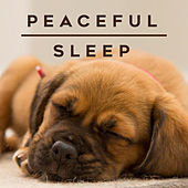 Peaceful Sleep de Various Artists