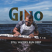 Still Waters Run Deep de Gino Rosaria