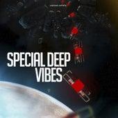 Special Deep Vibes van Various