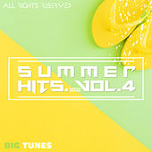 Summer Hits Dance Edition, Vol. 4 de Various