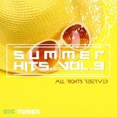 Summer Hits Dance Edition, Vol. 9 van Various