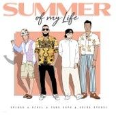 Summer of My Life von Gringo