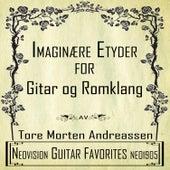 Imaginære etyder for gitar og romklang by Tore Morten Andreassen