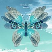 Real (Remixes) by Tritonal