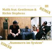 Nummern im System (Remix) de Malik