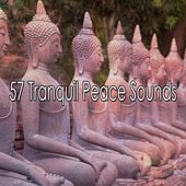 57 Tranquil Peace Sounds by Yoga Music