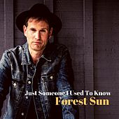 Just Someone I Used to Know von Forest Sun