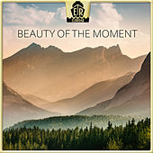 Beauty of the Moment by Daniel Elias Brenner