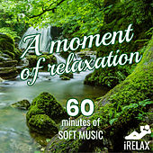 iRELAX A moment of Relaxation: 60 Minutes of Soft Music de Various Artists