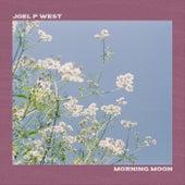 Morning Moon von Joel P West