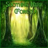Soothing Harp (Forest) de Derek Fiechter