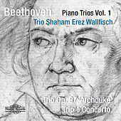 Beethoven: Piano Trios Vol. 1 by Hagai Shaham