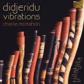 Didjeridu Vibrations de Charlie McMahon