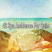 42 Spa Ambience for Calm de Relax musica zen club