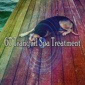 67 Tranquil Spa Treatment de Sounds Of Nature