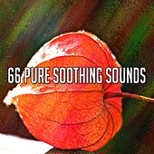 66 Pure Soothing Sounds de Asian Traditional Music