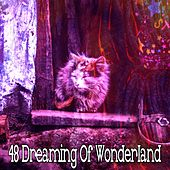 48 Dreaming of Wonderland by Serenity Spa: Music Relaxation