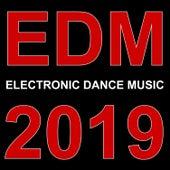 Edm 2019 von Various Artists