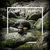 Stream de Nature Awakes