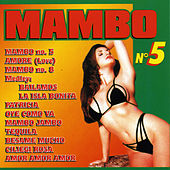 Mambo N. 5 by Various Artists