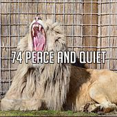 74 Peace and Quiet by S.P.A