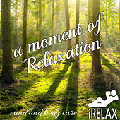 iRELAX A moment of Relaxation: Mind and Body Care by Various Artists
