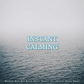 Instant Calming: Relaxation, Study, Sleep, Bedtime, Serenity, Harmony, Yoga, Meditation, Peaceful Dreams de Various Artists
