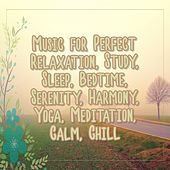 Music for Perfect Relaxation, Study, Sleep, Bedtime, Serenity, Harmony, Yoga, Meditation, Calm, Chill de Various Artists