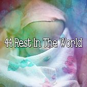 44 Rest in the World de S.P.A
