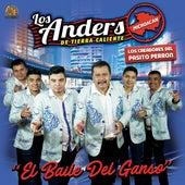 El Baile Del Ganso de Anders