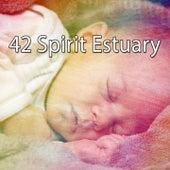 42 Spirit Estuary de Relaxing Music Therapy