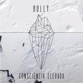 Consciência Elevada de Bully CZT
