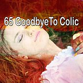 65 Goodbyeto Colic by Relaxing Spa Music