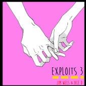 Exploits 3 von Jim wels