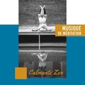 Musique de Méditation Calmante Zen - Pour la Méditation, le Yoga, le Spa, le Massage, la Relaxation, le Sommeil ou le Repos de Zone de la Musique Relaxante