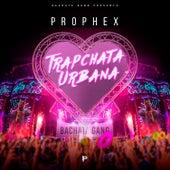 Trapchata Urbana von Prophex