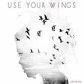 Use Your Wings, Vol. 5 by Various Artists
