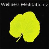 Wellness Meditation 2 de Various Artists
